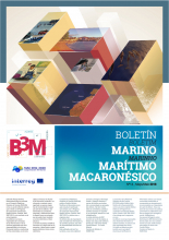 b3mBoletinN14