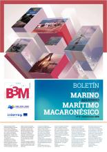 b3mBoletinN15